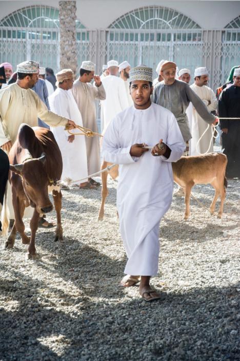Reisefotografie Viehmarkt in Oman