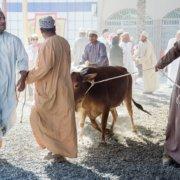 Reisefotografie Oman Händler