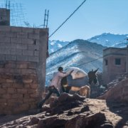 Reisefotografie Schafhirte Esel vor Berg