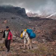 Mann und Pferd in Kazbegi